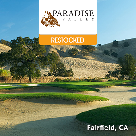Paradise Valley Featured RESTOCKED